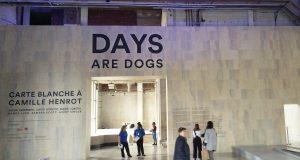 Museot Pariisi palais de tokyo days are dogs